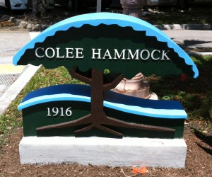 Colee Hammock Homes for sale in fort lauderdale