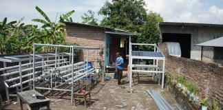 FTMM Unair Ciptakan Teknologi Smart Farming Hidroponik