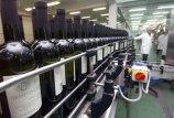 badel-1862-vino-proizvodnja-midi