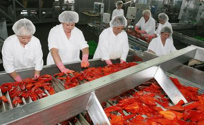 Podravka želi proizvoditi ajvar u potpunosti od domaće paprike