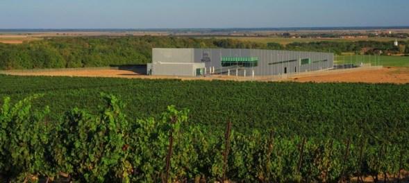 vina-belje-vinarija-panorama