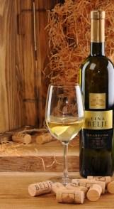vina belje