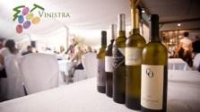 vino-istra-large
