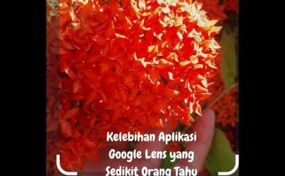 Kelebihan Aplikasi Google Lens Yang Sedikit Orang Tahu