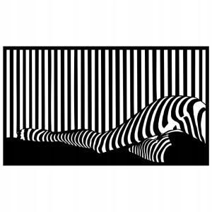 mergina zebras ažūrinis paveikslas