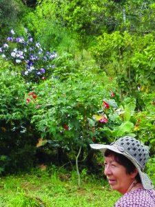 """""""Me encanta ensayar semillas, plantar, ver crecer las matas, me emociono cuando salen las flores y los frutos maduran""""."""