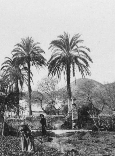 pla de Vila 1898