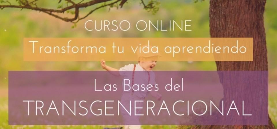las bases del transgeneracional curso online