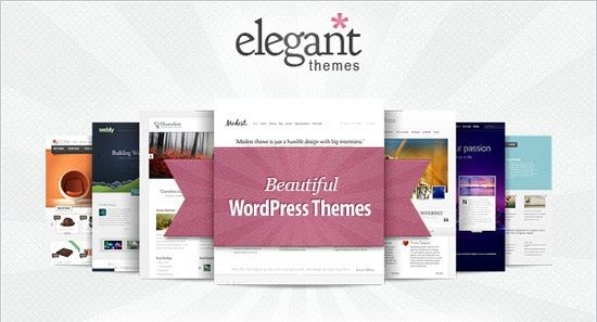 No aparecen las actualizaciones de Elegant Themes