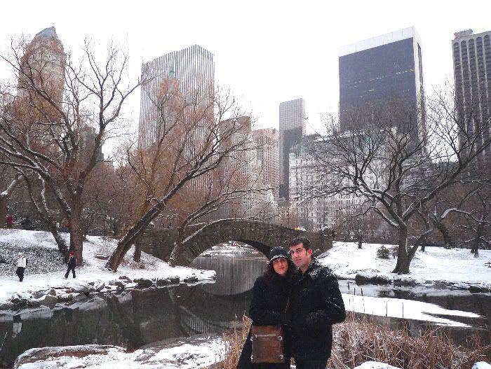 Navidad en Nueva York (31 de diciembre de 2008)