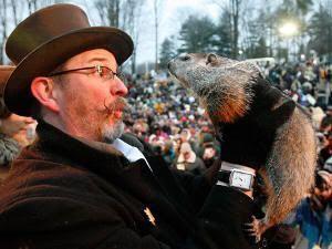 La marmota Phil durante la celebración del Día de la Marmota
