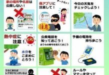 Advertencias sobre Pokemon Go en Japón