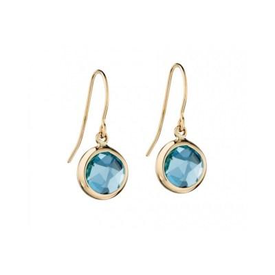9ct Yellow Gold Blue Topaz Earrings