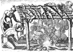 In a very early version of barbecue, the Timucua roast native fowl and marine animals, including alligators.