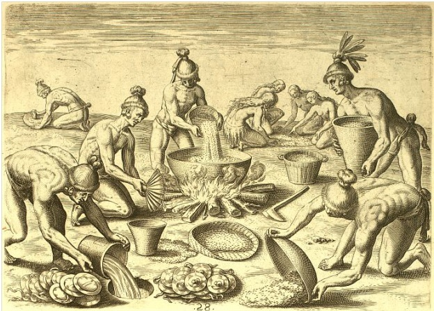 The Timucua, as depicted by Jacques Le Moyne, prepare a feast.