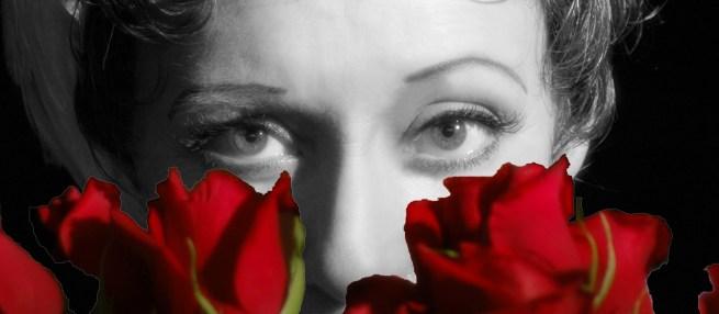 Piaf_08_rose_trace_moved