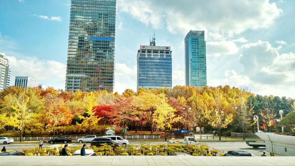 Fall colors. The view that welcomes you once you exit the KBS building.