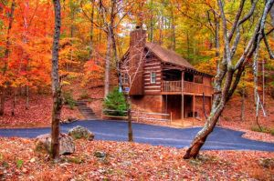 Lovers Hideaway is a secluded and private one bedroom cabin in Pigeon Forge. Perfect for honeymooners, anniversaries, or a private getaway