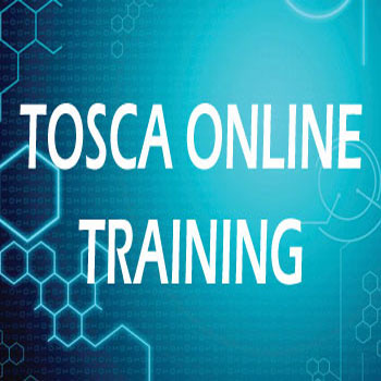 Tosca Real Time Online Training Course