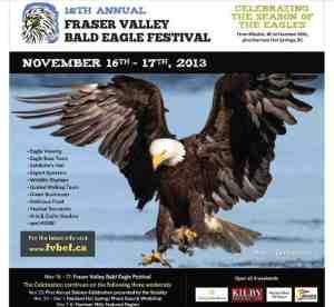 2013 FVBEF Poster_crop