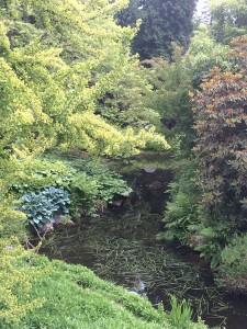UCB Botanical Garden