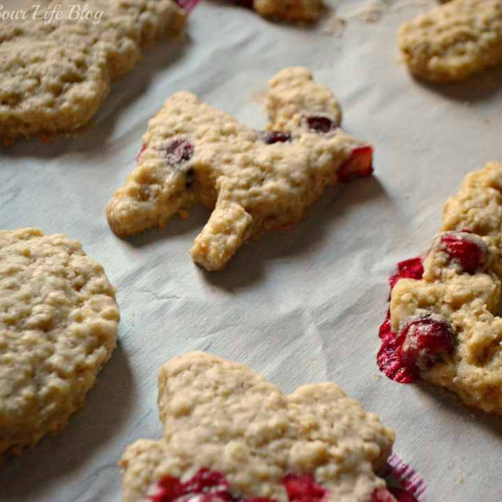 Moist Cranberry Oatmeal Cookies