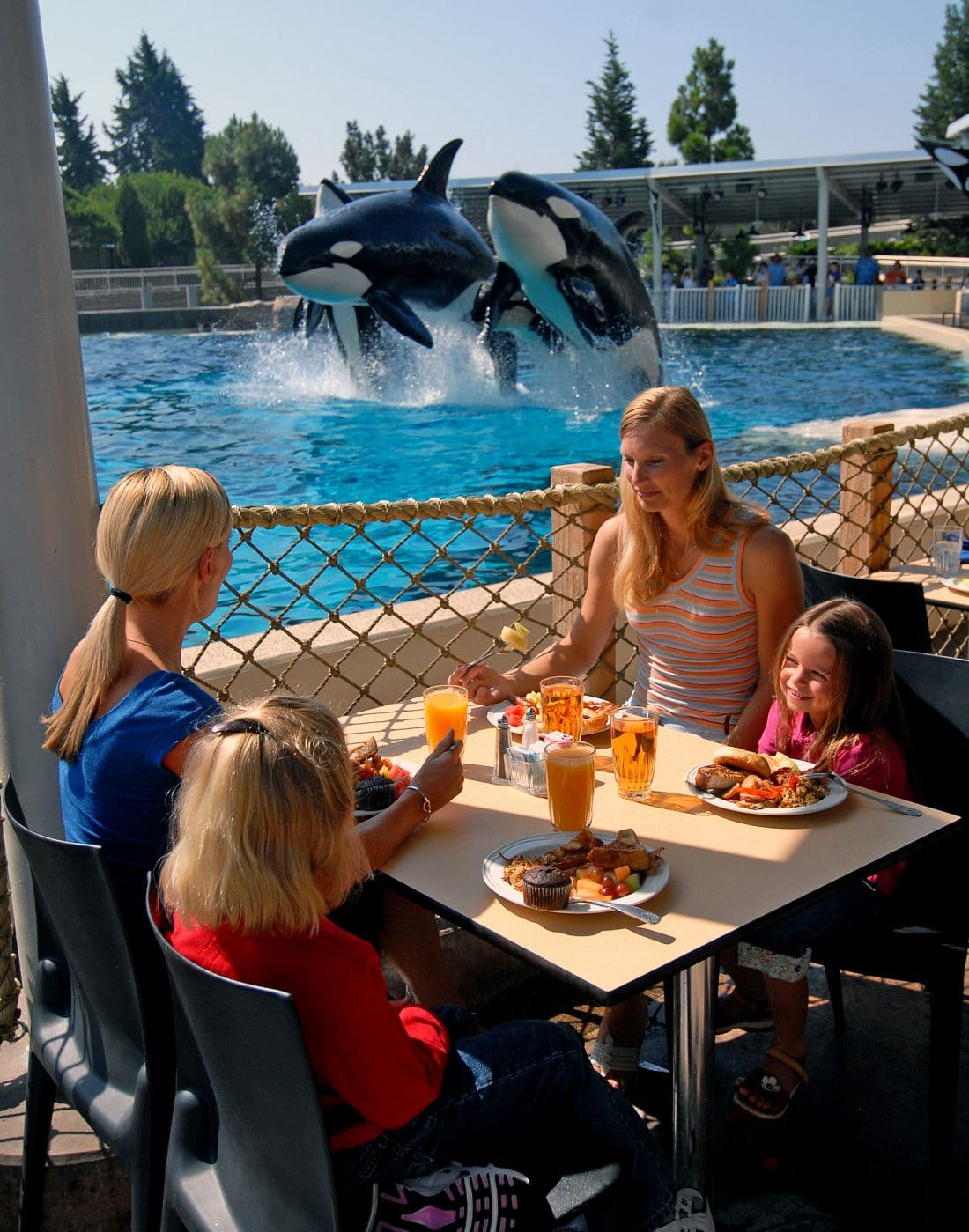 Family_Dining_next_to_Shamu_-Courtesy_SeaWorld