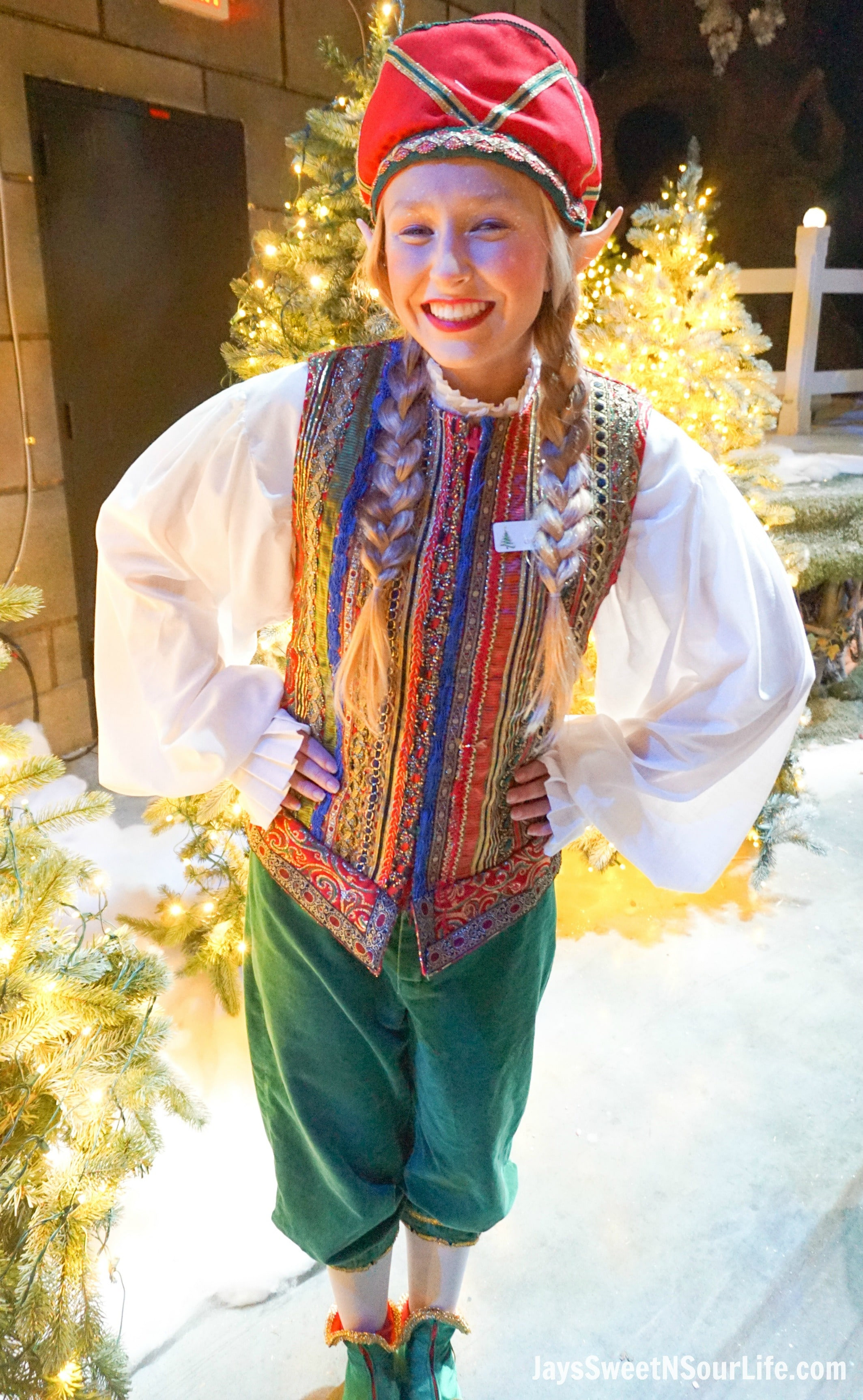 Top 10 things to do at christmas town in busch gardens - Can you bring food into busch gardens ...