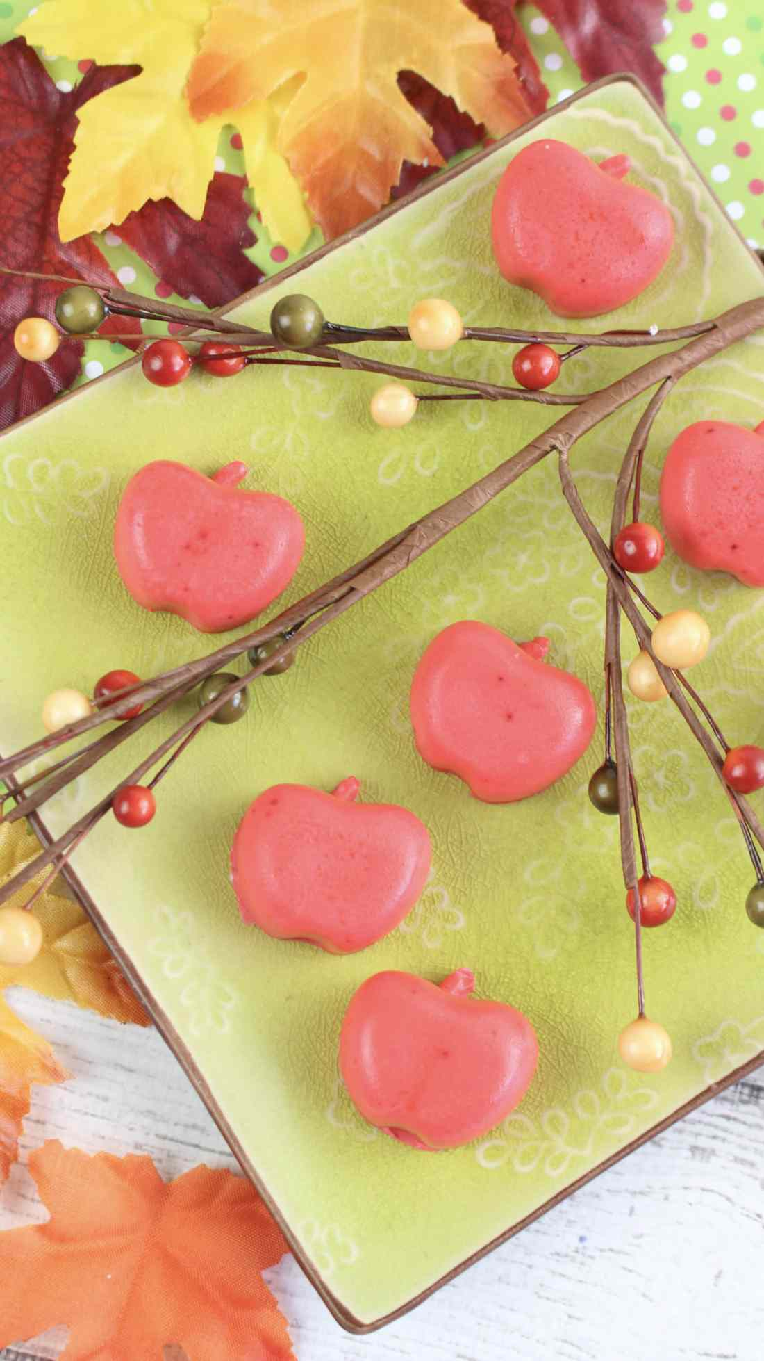Learn How To Make Apple Soap for a cute gift for the holidays. Create your very own Apple Soap's to give away as gifts for the holidays or decorate your home.