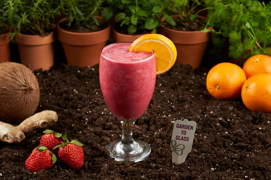 Busch Gardens Food and Wine Festival Garden to Glass Orange, Beet & Ginger Smoothie. Busch Gardens 7th Annual Food & Wine Festival kicks off May 17th. Every Friday, Saturday and Sunday from May 17-June 30 guests can enjoy food from and drinks from around the world.