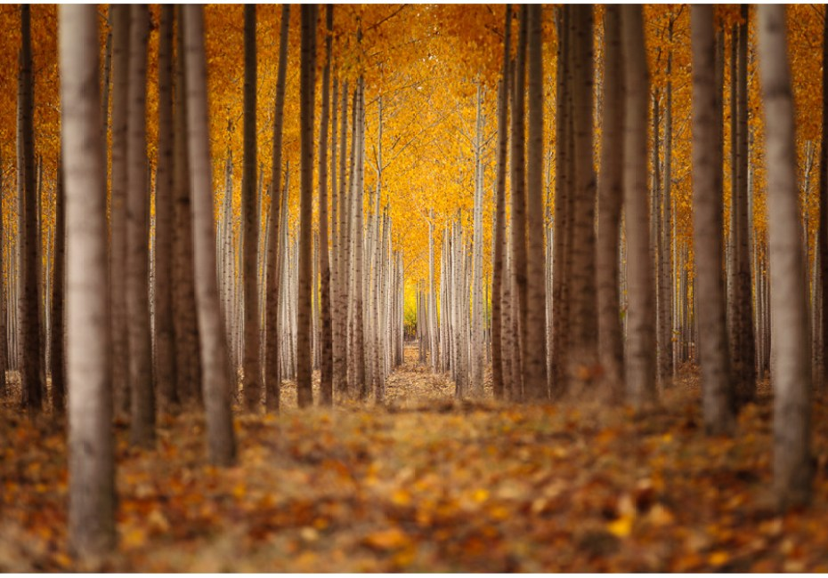 Finding My Way by Joe Azure.
