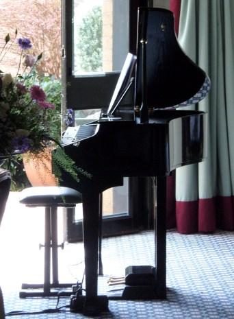 Baby Grand Piano Shell 2