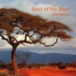 Soul of the bass – John Patitucci