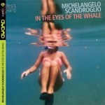 In the eyes of the whale - Michelangelo Scandroglio
