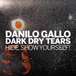 Hide, Show Yourself - Danilo Gallo