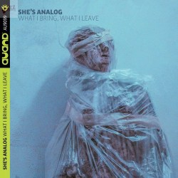What I Bring, What I Leave - She's Analog