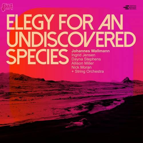 Elegy for an Undiscovered Species - Johannes Wallmann