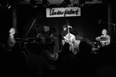 Das Julia Hülsmann-Trio. Foto: Thomas J. Krebs