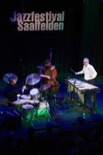 Christian lillinger (dr), Jonas Westergaard (b), Christopher Dell (vib), Nexus. 41.Jazzfestival Saalfelden, Photo (c) Ralf Dombrowski