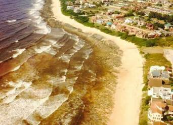 red tide jeffreys bay