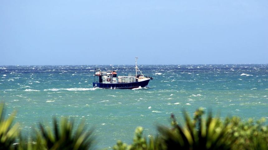 chokka boat jeffreys bay