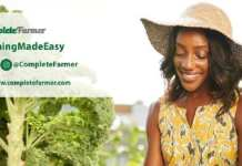 Agri-tech startup, Complete Farmer is looking to expand their operations into Ivory Coast and launch their mobile app as well