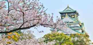 Top 4 Places in Japan That Will Leave You Breathless
