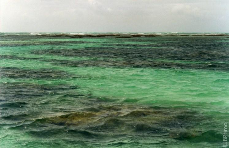 Brasil - Alagoas - Maragogi - Mergulho nos Recifes de Corais