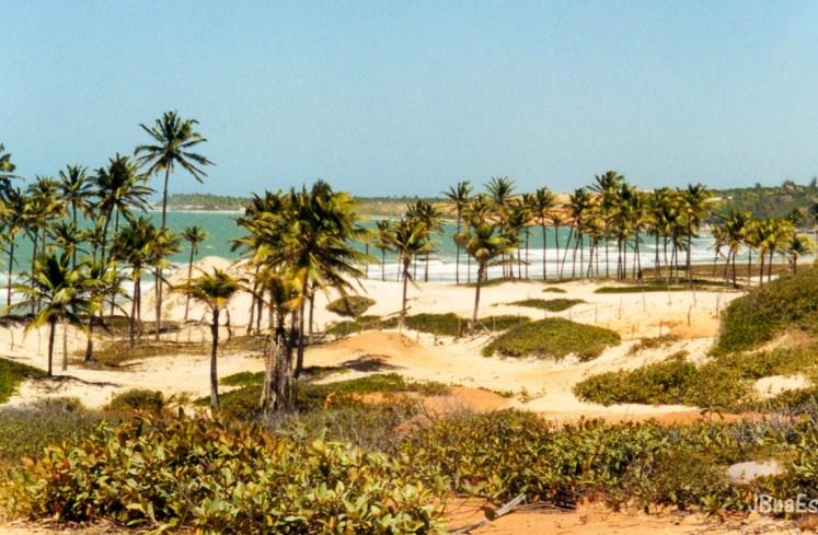 Brasil - Ceara - Lagoinha - Praia e Dunas
