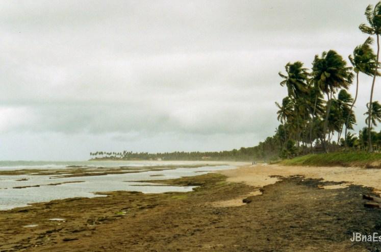 Brasil - Pernambuco - Praia de Muro Alto