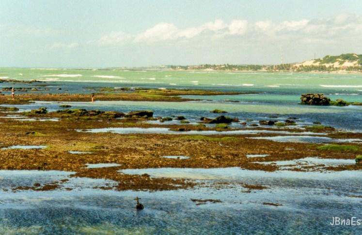 Brasil - Rio Grande do Norte - Litoral Sul - Piscinas Naturais de Pirangi do Sul