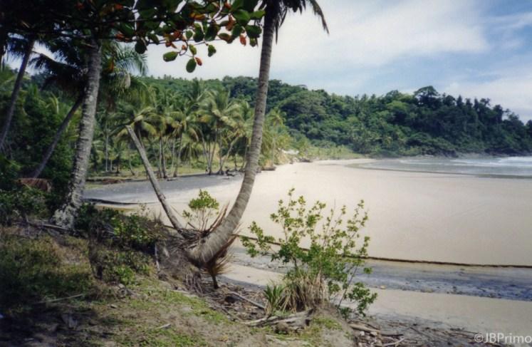 Brasil - Bahia - Itacare - Praia da Engenhoca