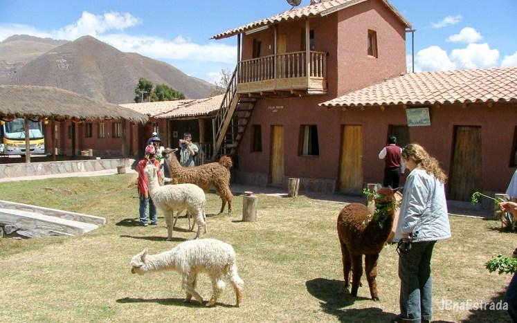 Peru - Viagem para Puno