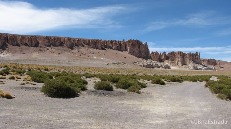 Chile - Atacama - Reserva Nacional Los Flamencos - Salar de Tara - Catedrais de Pedra